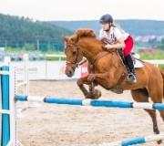 Как совершать прыжки на лошади