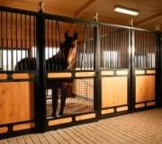Денники для лошадей