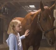ТОП-5 художественных кинофильмов о лошадях